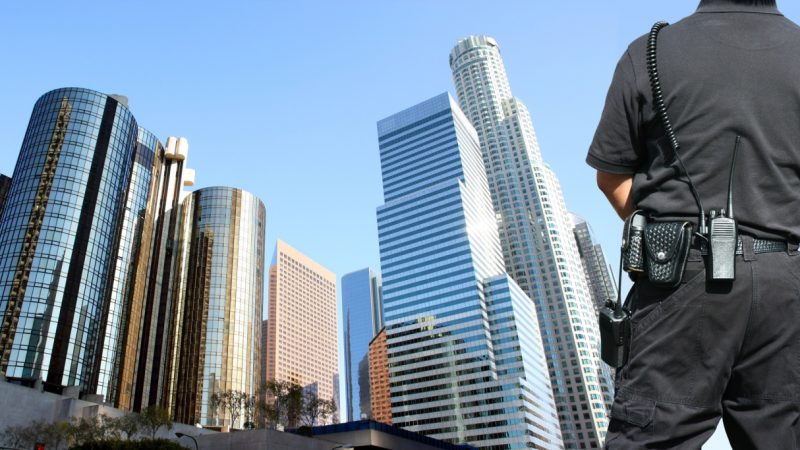 6 Reasons to Hire an Armed Security Professional